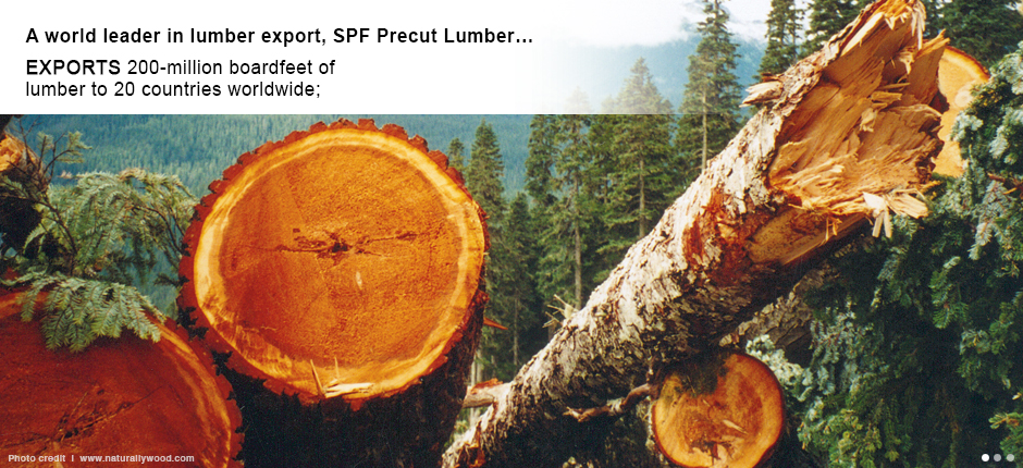 SPF Precut Lumber exports 200-million boardfeet of lumber to 20 countries worldwide;